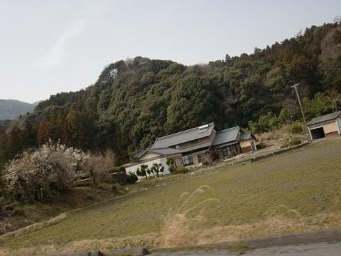 20130316-18.JPG